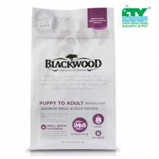 BLACKWOOD ALL LIFE STAGES SPECIAL DIET SALMON 2.72KG